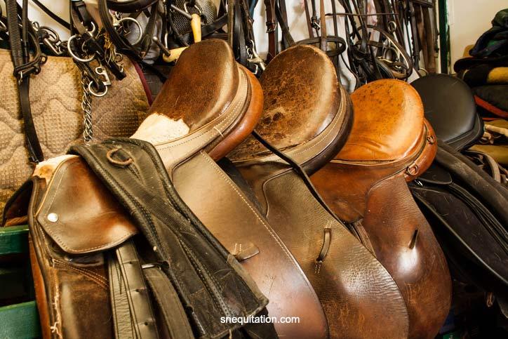 Les selles en cuir sont un élément incontournable de l'équipement du cheval