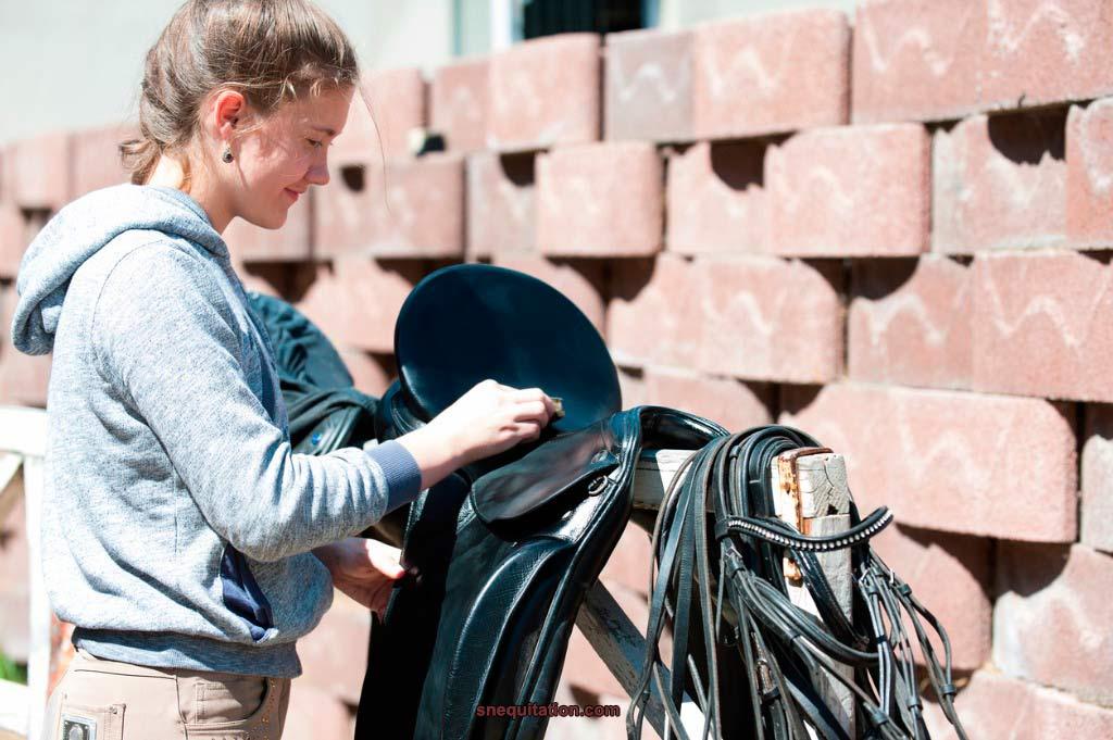 Entretenir ses cuirs d'équitation: la marche à suivre