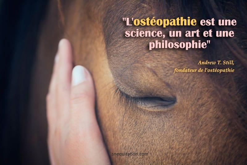 """""""L'ostéopathie est une science, un art et une philosophie"""""""
