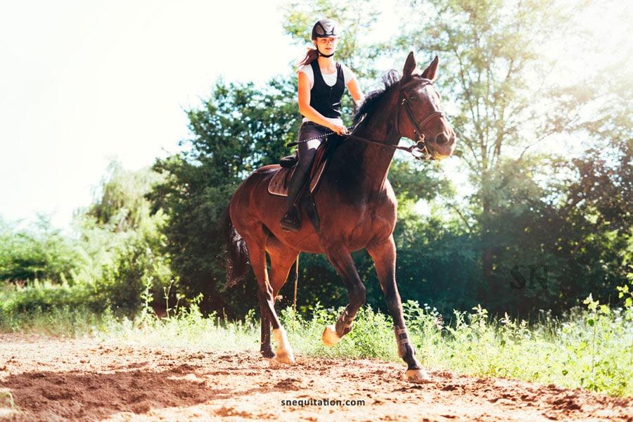 Comment aller au trot à cheval