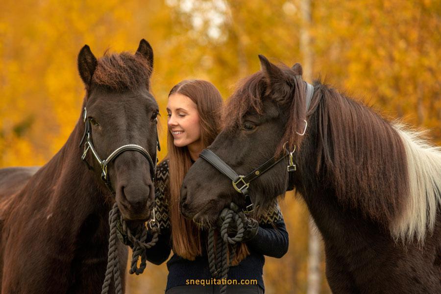 Les débuts avec son cheval
